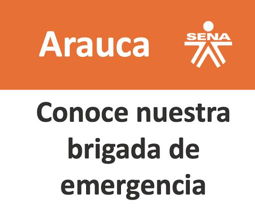 Brigrada Regional Arauca
