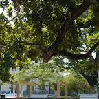 El parque de Tolú