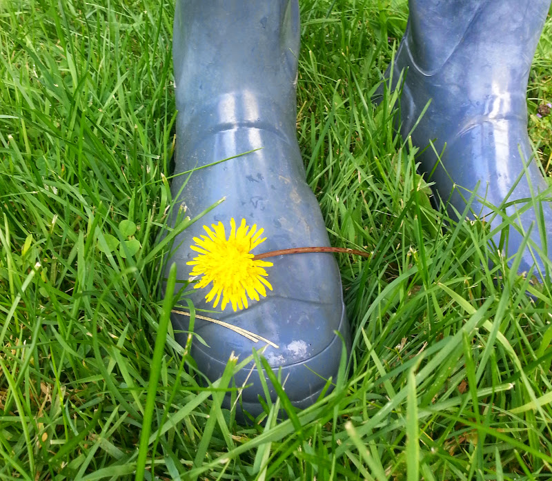 Rubber boots and dandelion