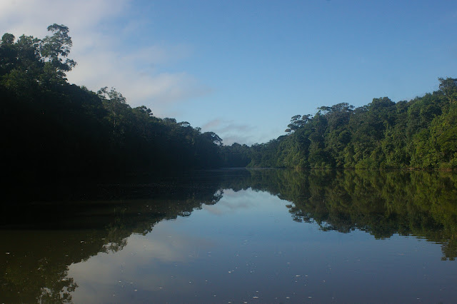 Sur l'Approuague (Guyane). 20 novembre 2011. Photo : J.-M. Gayman