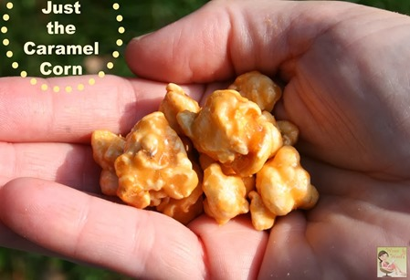 Just-the-Caramel-Corn5