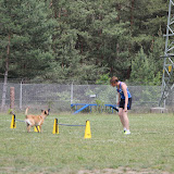 ATM Cup Sporthunde Franken - ATM%2BCup%2BSporthunde%2BFranken%2B257.JPG
