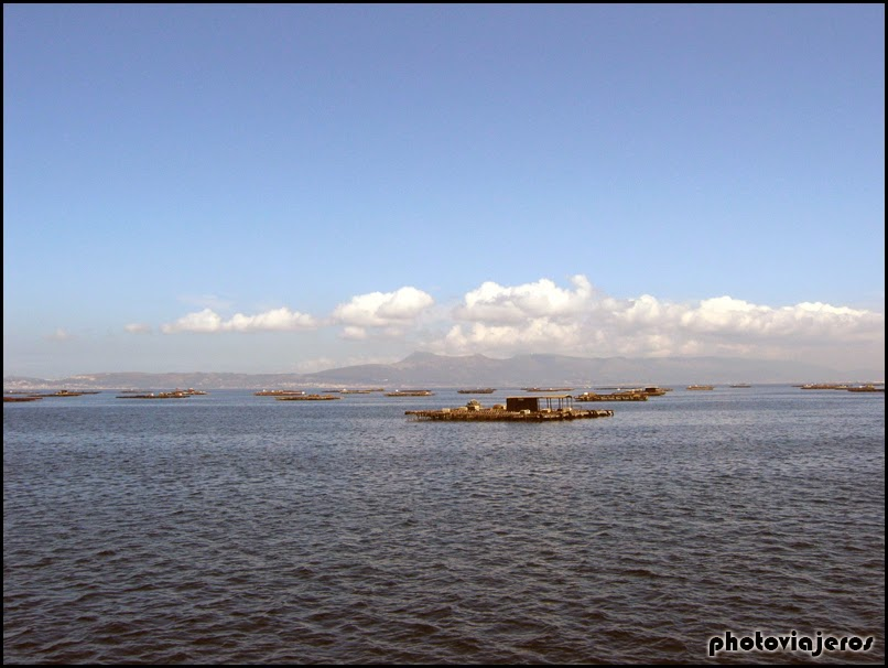 Ruta en Catamarán O'Grove