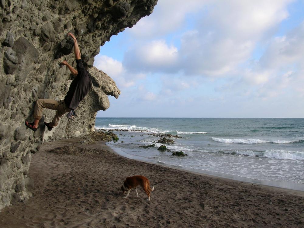 2014 · El Monsul, buscando conchas
