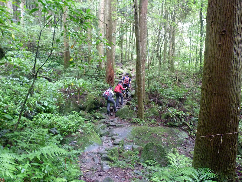 Petite randonnée au sud de Taufen, dans la région de Miaoli - P1330592.JPG