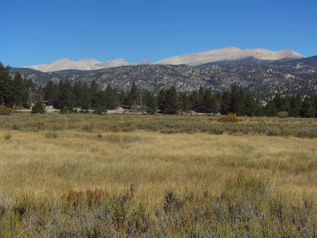 treeless mountains to the north