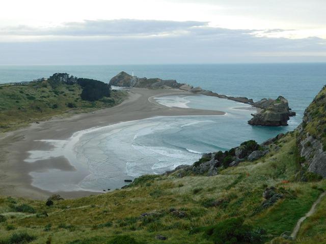 C33_NZ NI Castlepoint_2018-04-28_DSCN9201