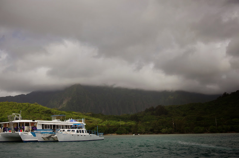 06-18-13 Waikiki, Coconut Island, Kaneohe Bay - IMGP7014.JPG