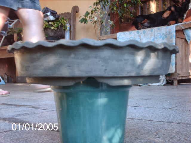 Vaso Chato de Fazer... PICT2072
