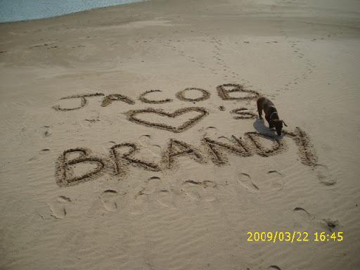 Brandy Berg