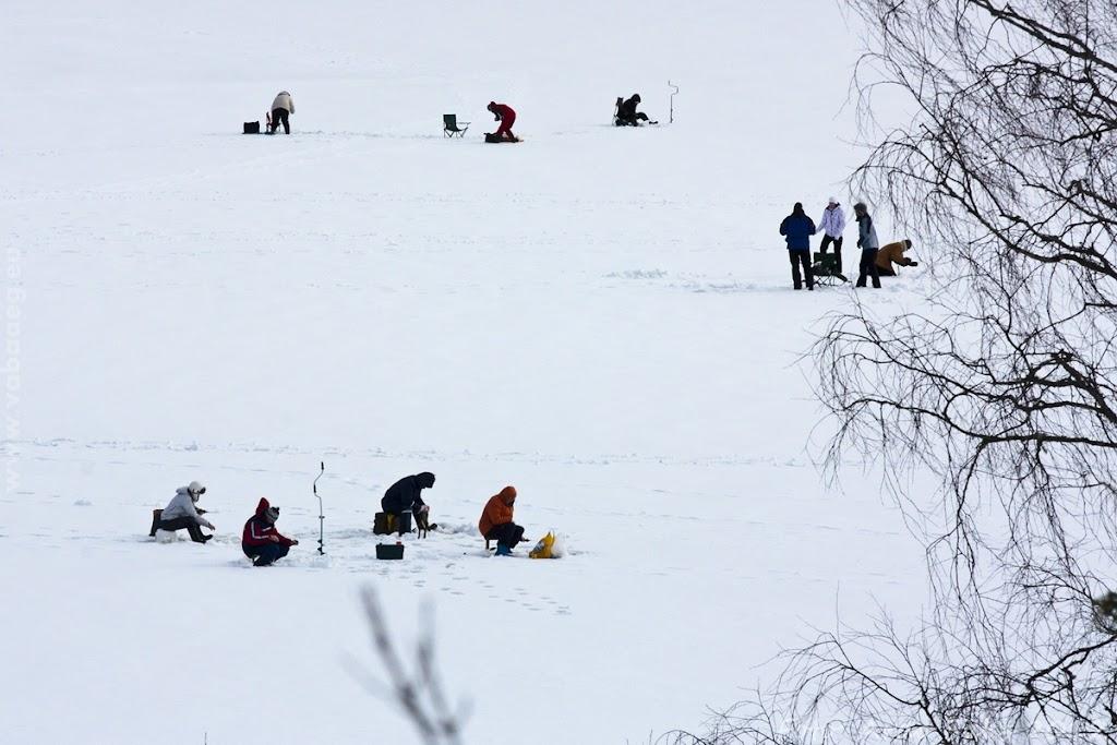 03.03.12 Eesti Ettevõtete Talimängud 2012 - Kalapüük ja Saunavõistlus - AS2012MAR03FSTM_206S.JPG