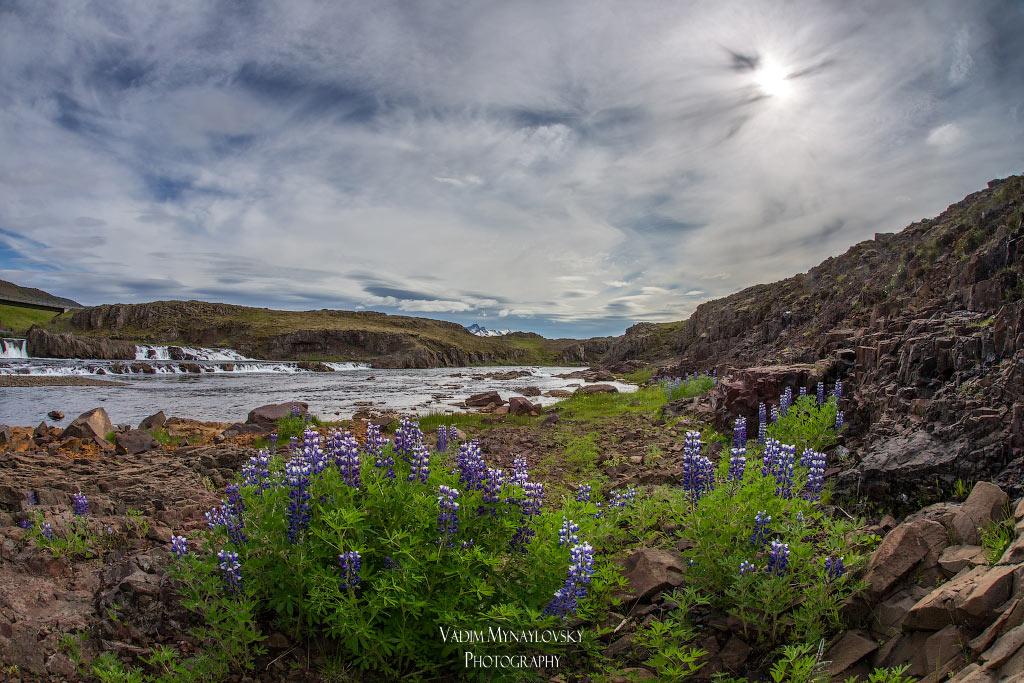 Неподалеку от тропы троллей в Исландии - near Troll Trail in Iceland