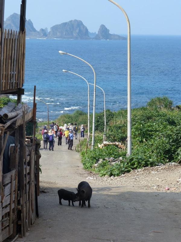 TAIWAN Ile de Lanyu - P1010288.JPG