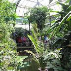 Botanická 066.jpg