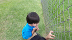 8.7.15 Outdoor Play Gary Gecko Hunting 3.jpg