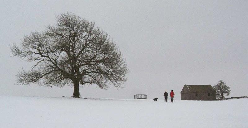 snow2010-19