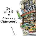 Le blog de Florent Chavouet