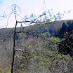 2006 Troop Campouts - PICT2615.jpg