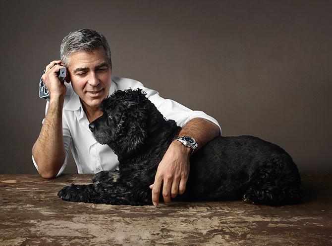 Perros acogidos por famosos: Einstein y George Clooney