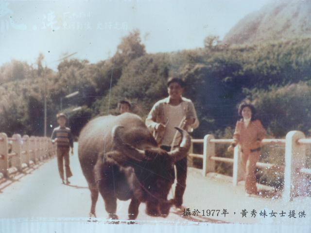 TAIWAN. Taitung, 30 kms autour - P1110928.JPG