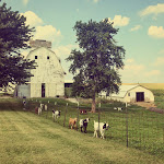 Goat Farm.JPG