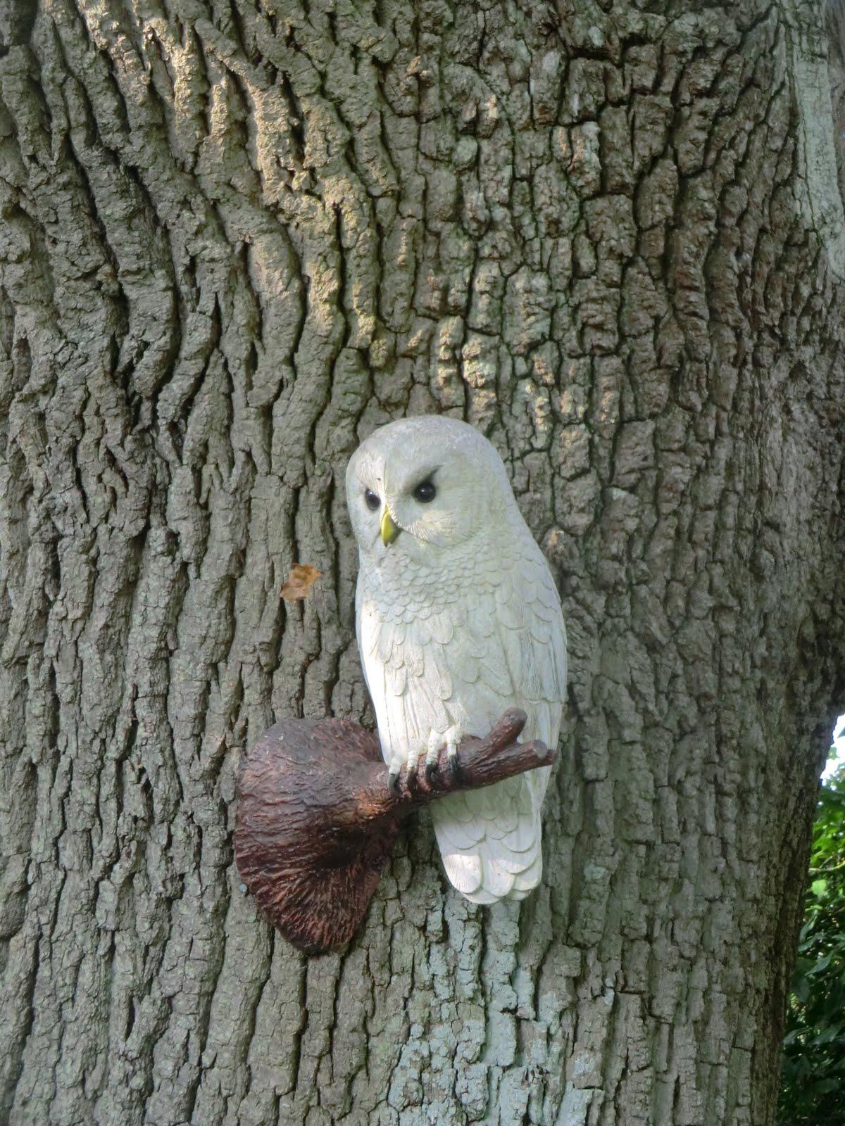 CIMG4651 Owl sculpture, Borde Hill