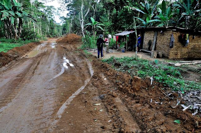 Hameau forestier. Environs d'Ebogo (Cameroun), 29 avril 2013. Photo : Daniel Milan