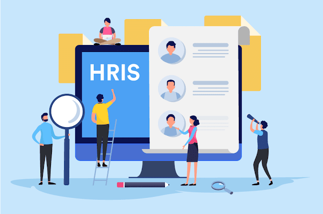 How does HRIS Software add value to your organization?