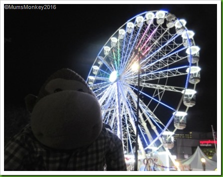 Birmingham Ferris Wheel
