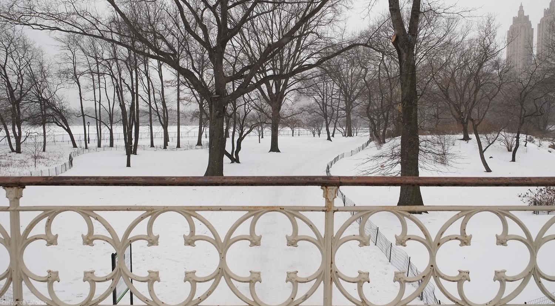 Reservoir Bridge Central Park