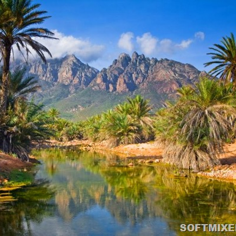 Пейзажи острова Сокотра