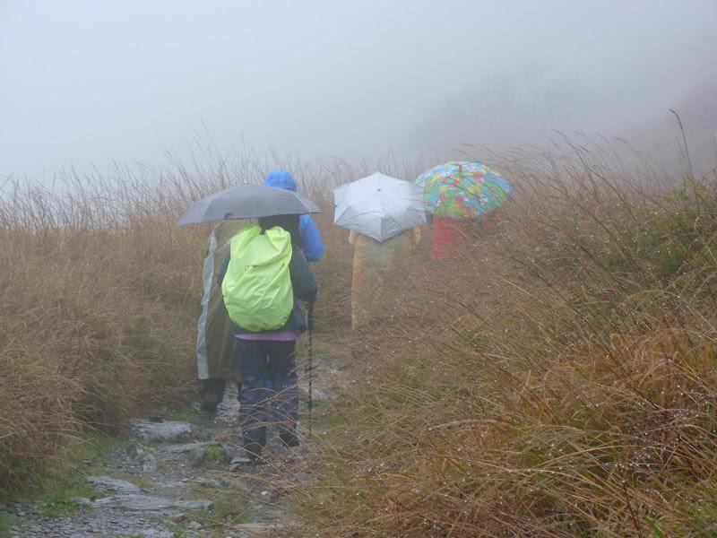 TAIWAN. Weekend Randonnée, Taipei à  Hehuanshan en passant par Puli, retour par les gorges de Taroko - P1280903.JPG