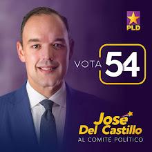 José del Castillo electo al Comité Político del PLD
