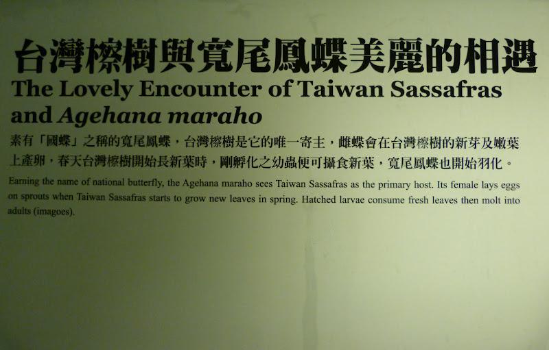 Yilan County.Taucheng , Musée Lanyang - P1230183.JPG