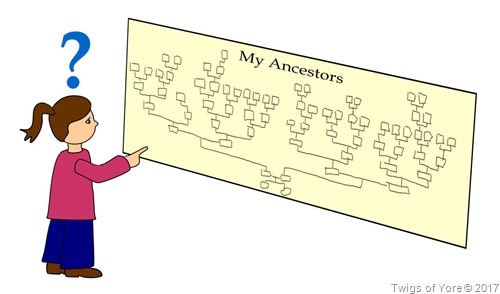 Child looking at ancestor chart