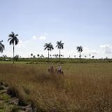 Kuba - Półwysep Zapata