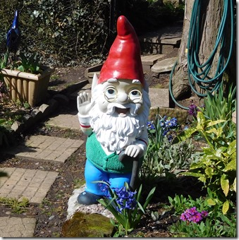 9 new gnomes in the lock cottage garden