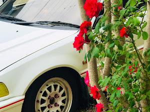 シビック EF9 SIR 平成2年式のカスタム事例画像 Makotoさんの2020年05月15日12:33の投稿