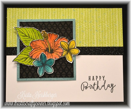 2016-7 blog hop - hawaiian hibiscus - calypso card DSC_1895