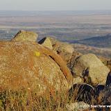 11-08-14 Wichita Mountains and Southwest Oklahoma - _IGP4726.JPG