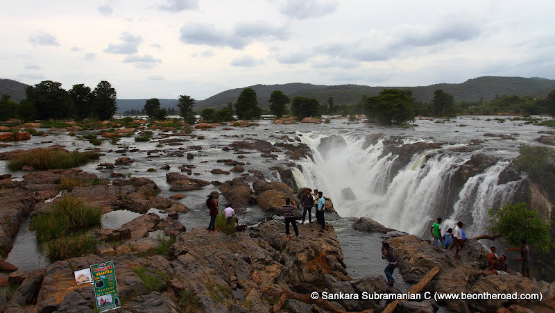 The wide and furious Cauvery tumbles here to form the wide and massive Hogenakkal Falls