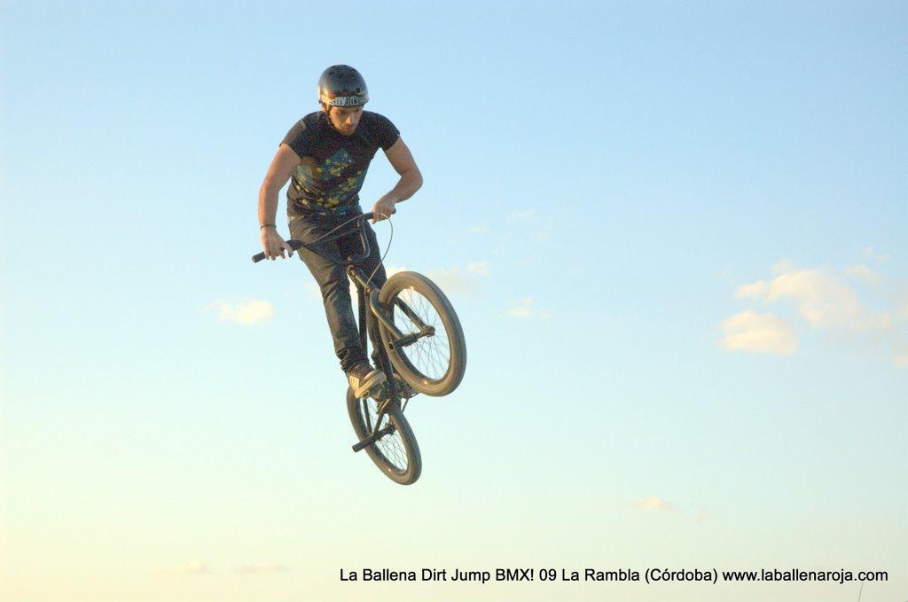 Ballena Dirt Jump BMX 2009 - BMX_09_0141.jpg