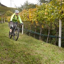 eBike Biobauer Rielinger Tour 19.10.16-7706.jpg