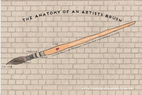 The anatomy of an artists brush