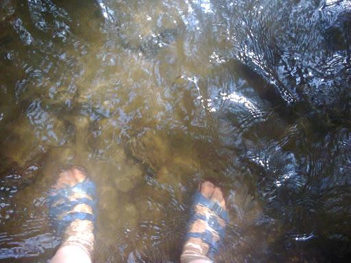 Fotos roemenie zomer van mobiel 2015 juli augustus 054.jpg