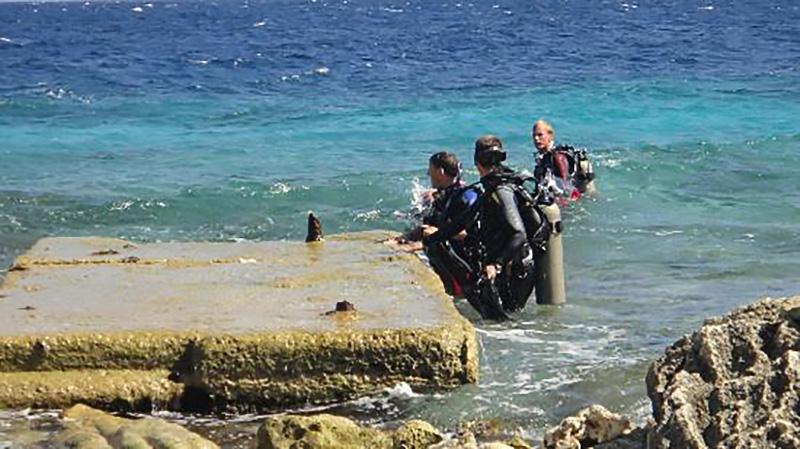 Bonaire: Plataforma en Karpata