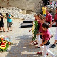 Ofrena Floral Diada de Catalunya  11-09-14 - IMG_3707.JPG