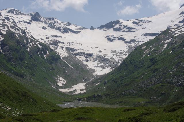 Alp Muot Selvas, Val Fex, 2100 m (Engadine, Grisons, CH). 14 juillet 2013. Photo : J.-M. Gayman