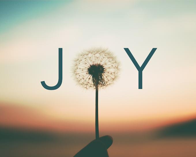 Where Joy Begins