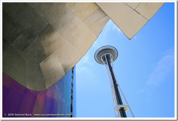 150626_Seattle_SpaceNeedle_0015